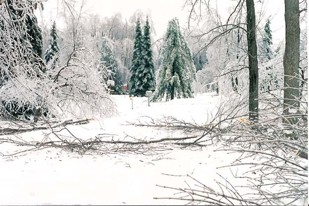 ice storm 1